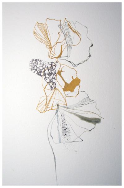 Ochrebotanical1