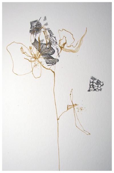 Ochrebotanical2